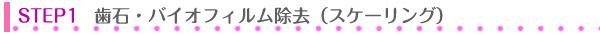 沢口由美子のトラディッショナルコース歯石とバイオフィルム除去スケーリング